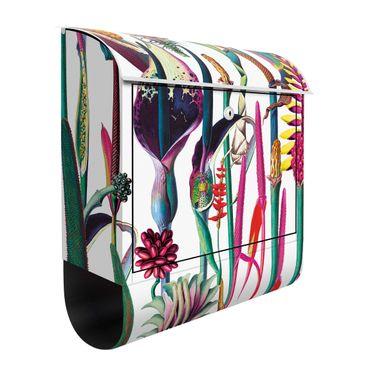 Cassetta postale - Trama tropicale lussuosa XXL