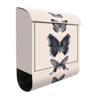 Cassetta postale - Farfalla in china su beige
