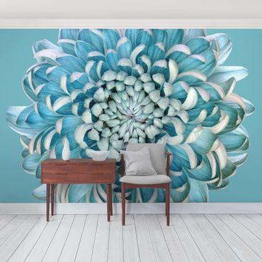 Carta da parati - Crisantemo Blu