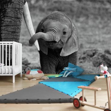 Carta da parati - Elefantino