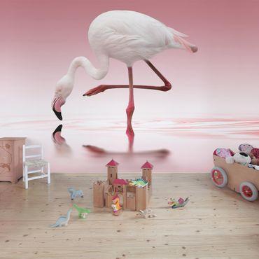 Carta da parati - Flamingo Dance