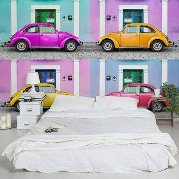 Carta da parati - Colourful beetles