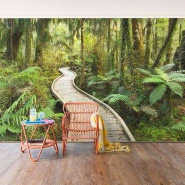 Carta da parati - Path in the virgin forest