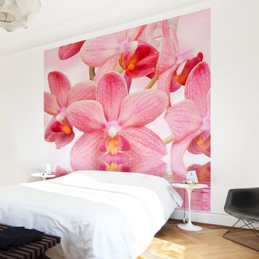 Carta da parati - Pink Orchid on water