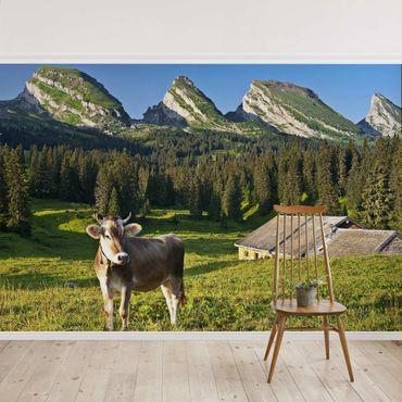 Carta da parati - Swiss Alpine meadow with cow