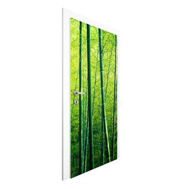 Carta da parati per porte - Foresta di bambù