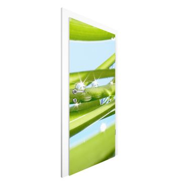 Carta da parati per porte - Fresh Green