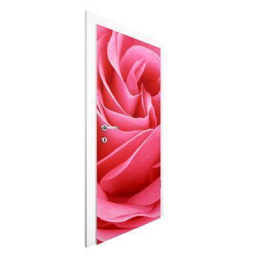 Carta da parati per porte - Lustful Pink Rose
