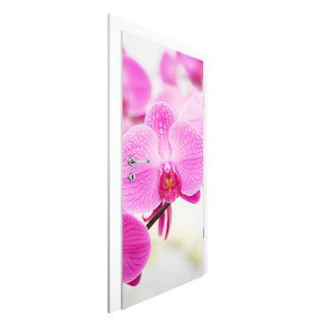 Carta da parati per porte - Close up orchid