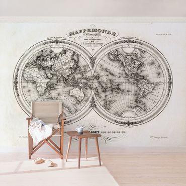 Carta da parati - Antica mappa francese degli emisferi del 1848