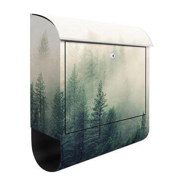 Cassetta postale - Foresta nebbiosa al risveglio