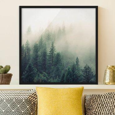 Poster con cornice - Foresta nebbiosa al risveglio