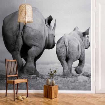Carta da parati metallizzata - Wandering Rhinos II