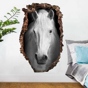 Adesivo murale 3D - Dream Of A Horse - verticale 2:3