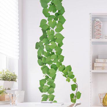 Adesivi murali foglie - Ramo rampicante foglie a forma di cuore