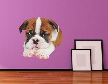 Adesivo murale - cucciolo sdraiato