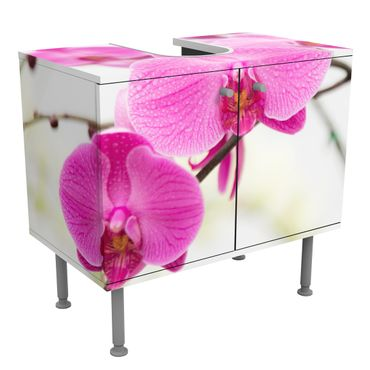 Mobile per lavabo design Close-up of orchid