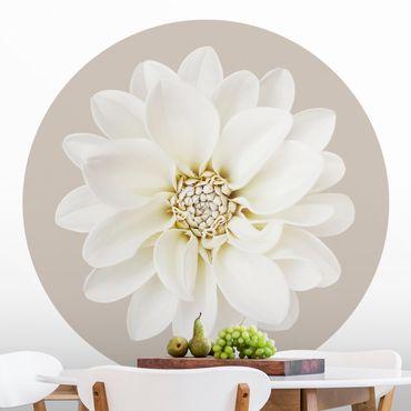 Carta da parati rotonda autoadesiva - Dahlia bianco su crema