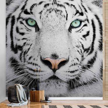 Carta da parati metallizzata - Tigre bianca