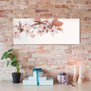 Quadro in vetro - Fiori di ciliegio delicati in ramo