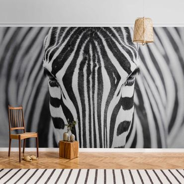 Carta da parati metallizzata - Zebra Look