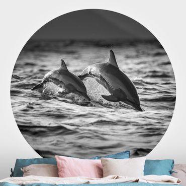 Carta da parati rotonda autoadesiva - Due delfini che saltano