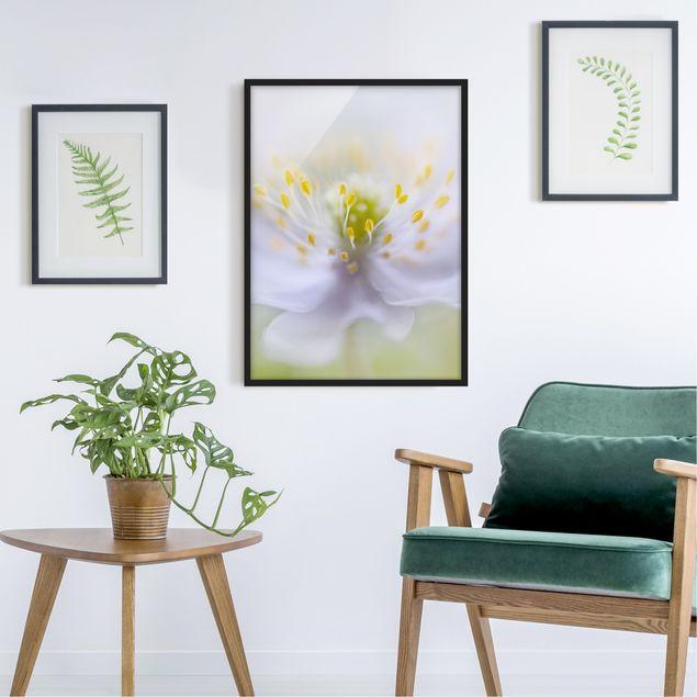 Poster con cornice - Anemones Beauty - Verticale 4:3