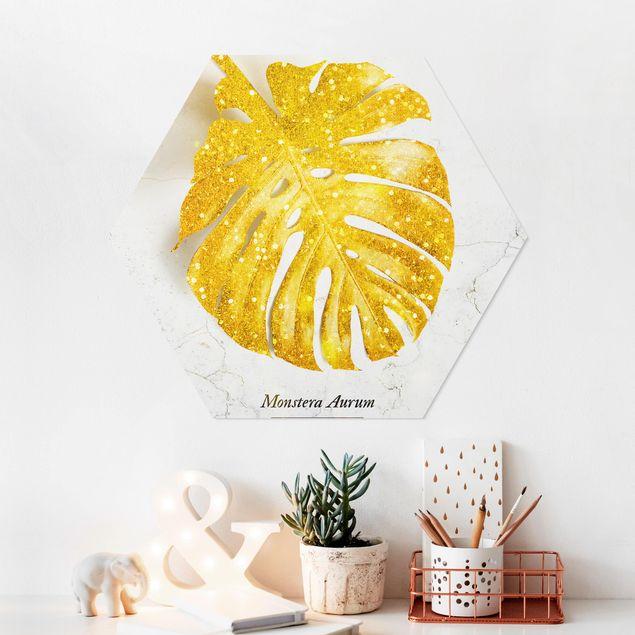 Esagono in forex - Gold - Monstera Aurum