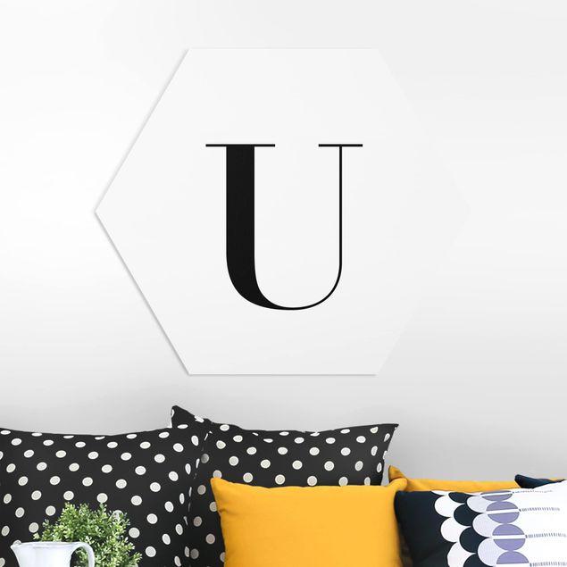 Esagono in forex - Lettera Serif White U