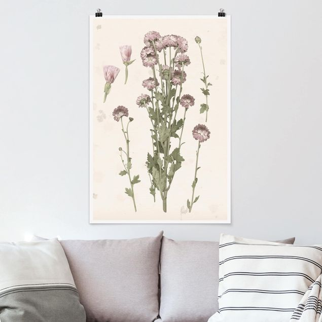 Poster - Herbarium In Pink I - Verticale 3:2