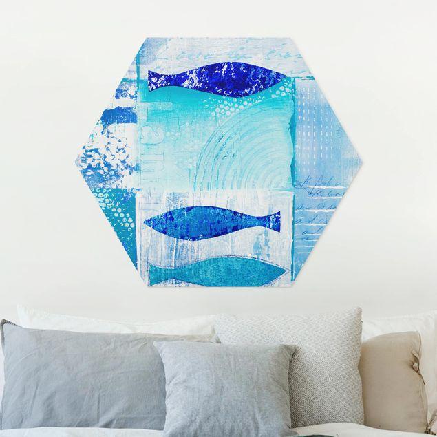 Esagono in forex - Pesce In The Blue