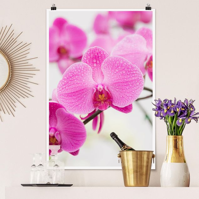 Poster - vicino Orchid - Verticale 3:2