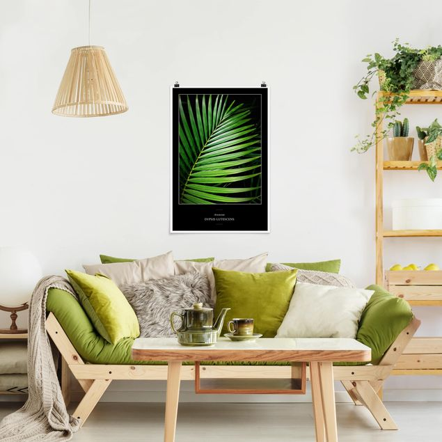 Poster - Tropical Palm Leaf - Verticale 3:2