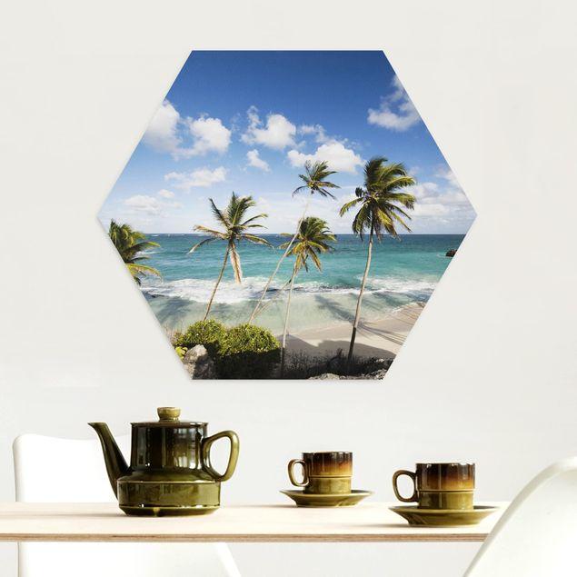 Esagono in Alu-dibond - Spiaggia Di Barbados