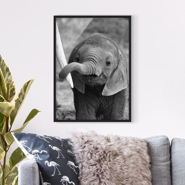 Poster con cornice - Baby Elephant - Verticale 4:3
