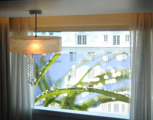 Decorazione per finestre Kiss of Sun