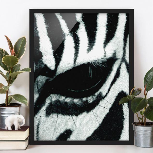 Poster con cornice - Zebra Crossing No.4 - Verticale 4:3