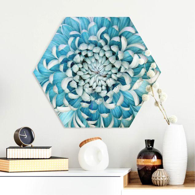 Esagono in forex - Blu crisantemo