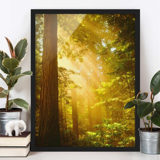 Poster con cornice - Morning Gold - Verticale 4:3