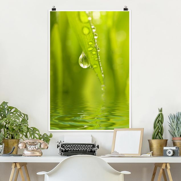 Poster - Morning Dew - Verticale 3:2