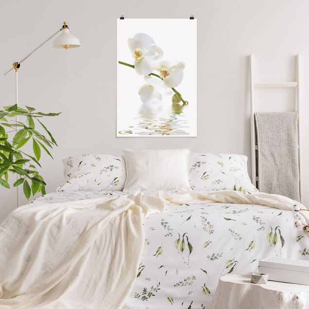 Poster - White Orchid Waters - Verticale 3:2