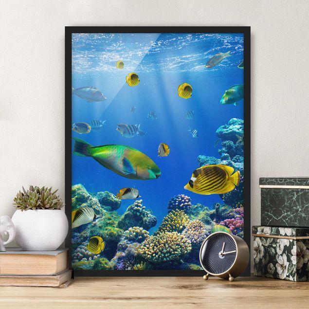 Poster con cornice - Underwater Lights - Verticale 4:3