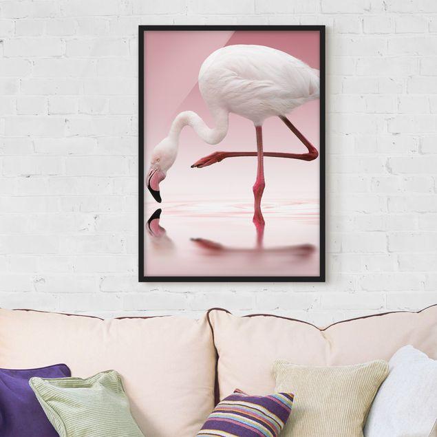 Poster con cornice - Flamingo Dance - Verticale 4:3