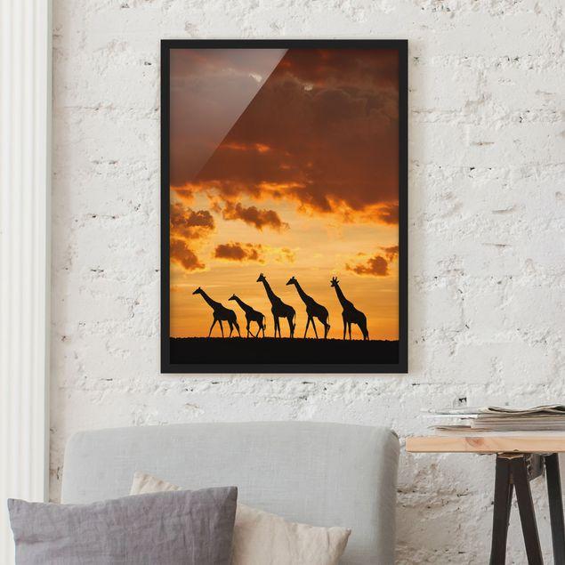 Poster con cornice - Five Giraffes - Verticale 4:3