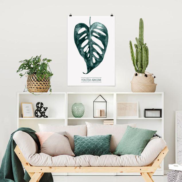 Poster - Emerald Monstera adansonii - Verticale 3:2