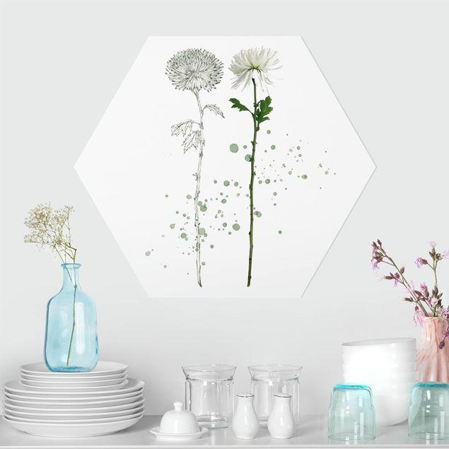 Esagono in forex - Botanico Acquerello - Dandelion