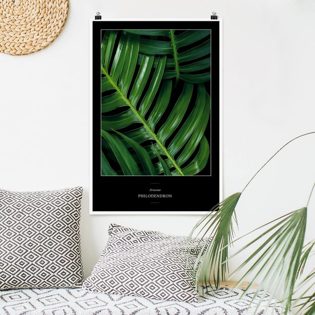 Poster - Tropical Leaves Philodendron - Verticale 3:2