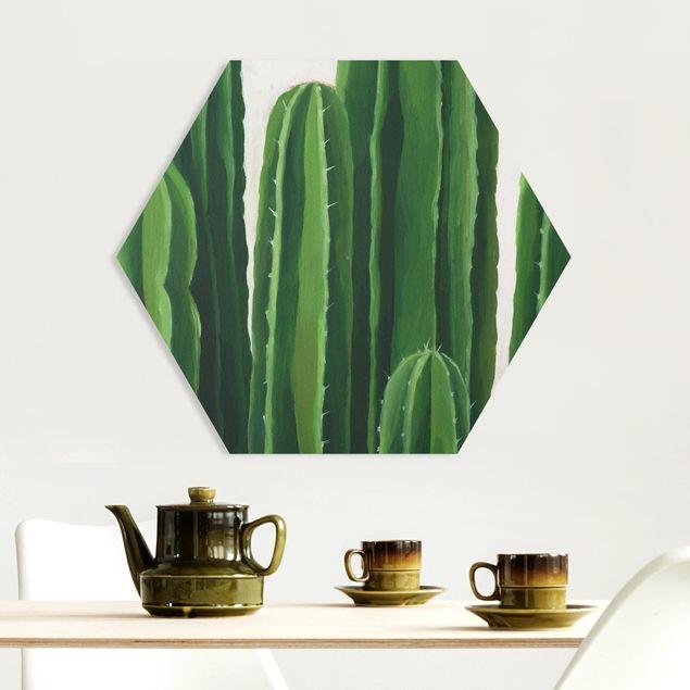 Esagono in forex - Piante preferite - Cactus