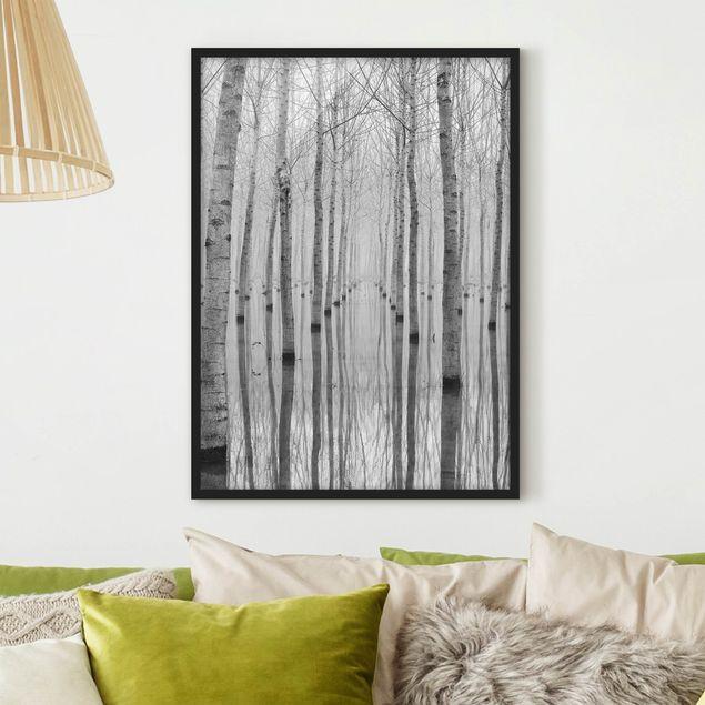 Poster con cornice - Birches In November - Verticale 4:3