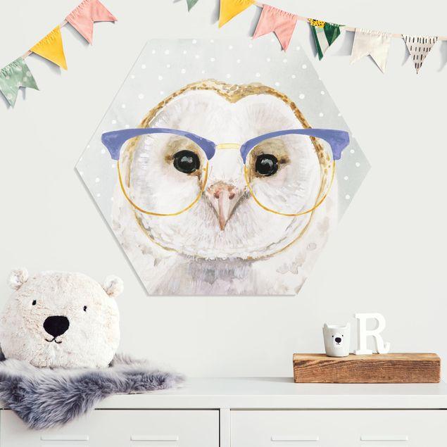 Esagono in forex - Animali Occhialuto - Owl